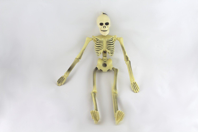 Halloween Skelett 40 cm Beweglich